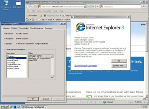 Windows Internet Explorer 8.00.6001.18702 (longhorn_ie8_rtm(wmbla).090308-0339)